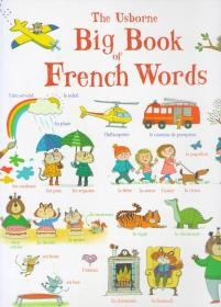 The Usborne Big Book of French Words