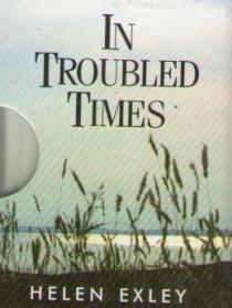 Фото книги In Troubled Times